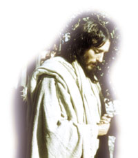 Aquel día en que Jesús lloró