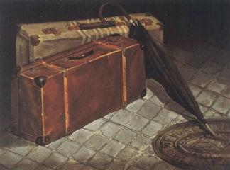 El equipaje que va conmigo